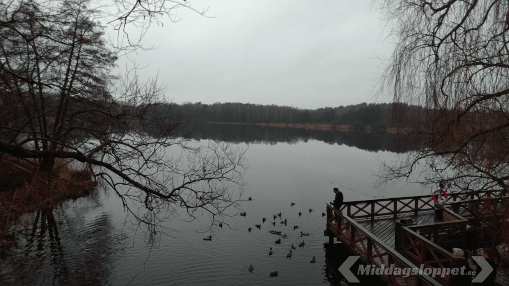 Middagsloppet Lillsjön
